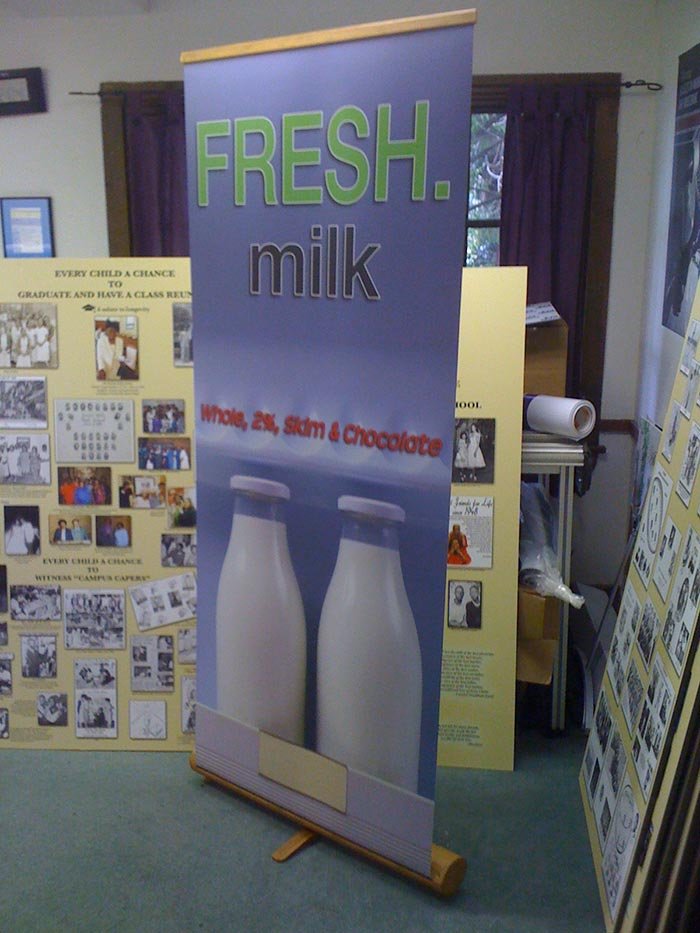 Bamboo Fresh Milk Banner